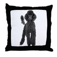 Poodle Picture - Throw Pillow