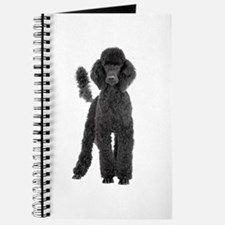 Poodle Picture - Journal