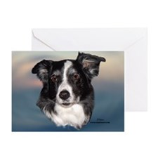 Sam the Border Collie Greeting Cards (Pk of 10