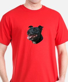 Pit Bull Picture - T-Shirt