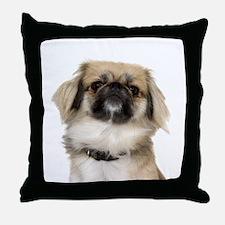Pekingese Picture - Throw Pillow