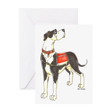 NMtl Red Vest Greeting Card