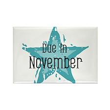 Blue Star Due In November Rectangle Magnet
