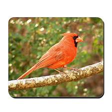 Elegant Cardinal Mousepad