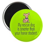 Magnet. Smart rescue dog.