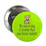 Button. Smart rescue dog.