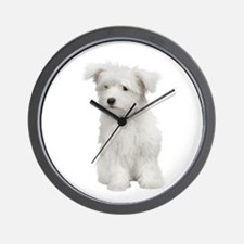 Maltese Picture - Wall Clock