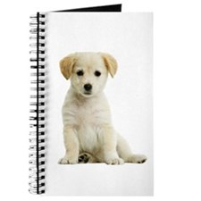 Labrador Retriever Picture - Journal