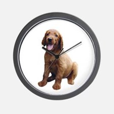 Irish Setter Picture - Wall Clock