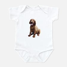 Irish Setter Picture - Infant Bodysuit