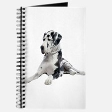 Great Dane Picture - Journal