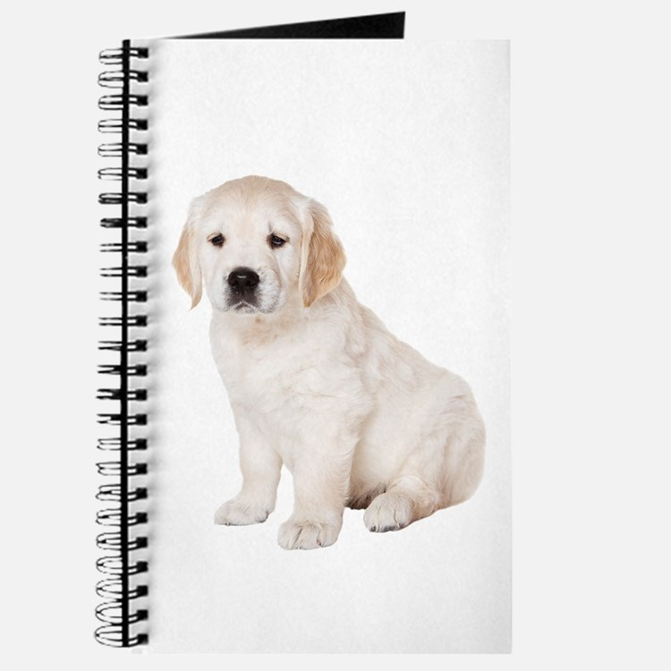 Golden Retriever Picture - Journal