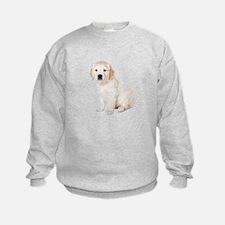 Golden Retriever Picture - Sweatshirt