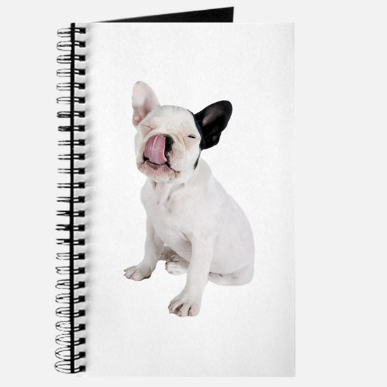 French Bulldog Picture - Journal