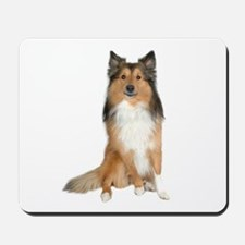 Collie Picture - Mousepad