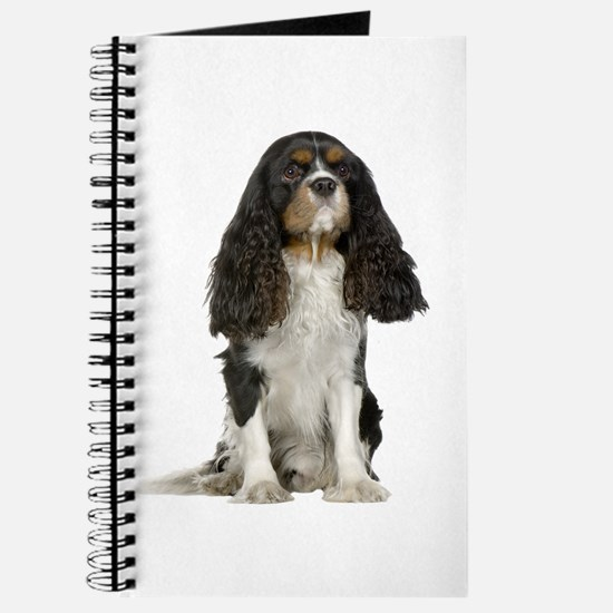 Cavalier King Charles Picture - Journal