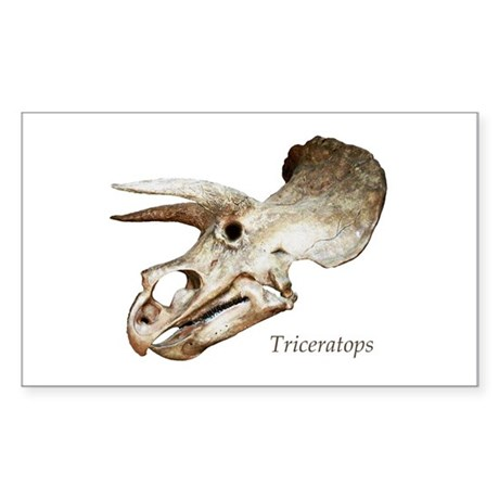 Triceratops Skull Rectangle Sticker