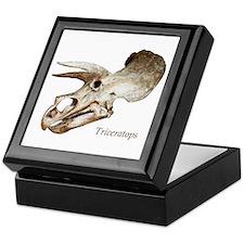 Triceratops Skull Keepsake Box