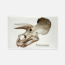 Triceratops Skull Rectangle Magnet