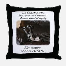21st Century Couch Potato Throw Pillow