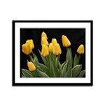 Yellow Tulips Framed Panel Print