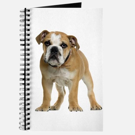 Bulldog Picture - Journal