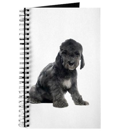 Bedlington Terrier Picture - Journal