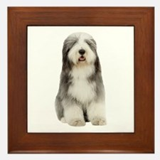 Bearded Collie Picture - Framed Tile