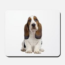 Basset Hound Picture - Mousepad