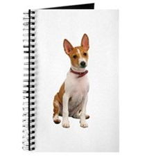 Basenji Picture - Journal
