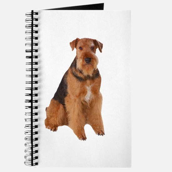 Airedale Picture - Journal