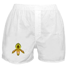 Green & Peach Paph Orchid Boxer Shorts
