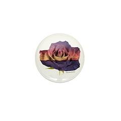 Sunset Rose Mini Button (10 pack)
