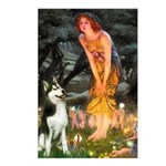 Mid.Eve / Siberian Husky Postcards (Package of 8)