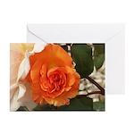 Orange Rose Greeting Cards (Pk of 10)