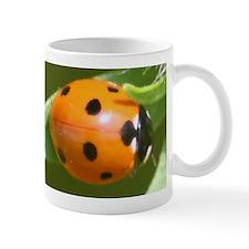 Ladybug Beetle Mug