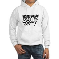 What Would Zeus Do? Hoodie
