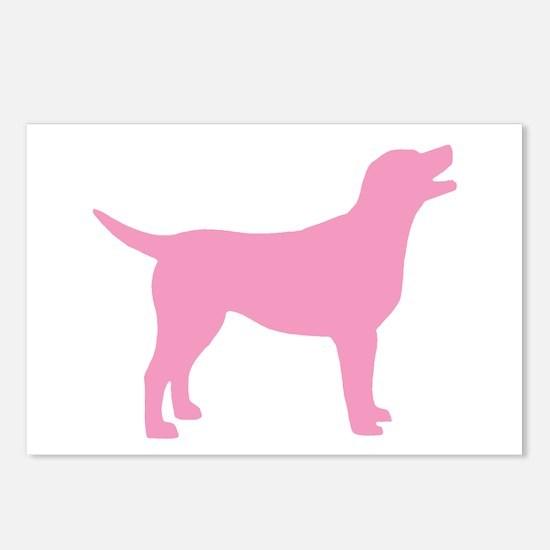 pink labrador retriever Postcards (Package of 8)