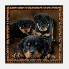 Rottweiler Rottie Puppies Tile Coaster