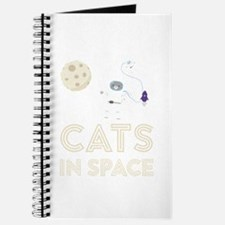 Cats in Space Ctfb7 Journal