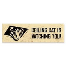 Ceiling Cat is Watching YOU - Bumper Bumper Sticker