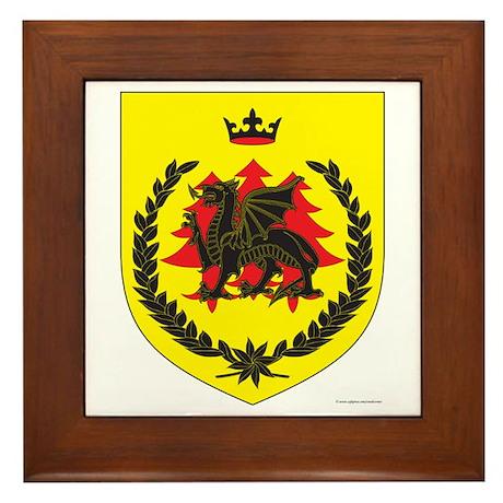 King of Drachenwald Framed Tile