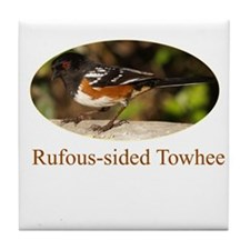 Rufous-sided Towhee Tile Coaster