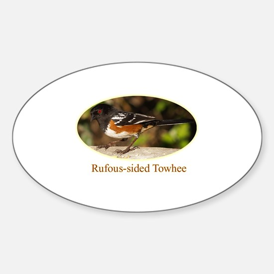 Rufous-sided Towhee Oval Decal