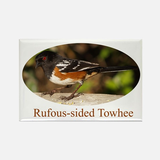 Rufous-sided Towhee Rectangle Magnet