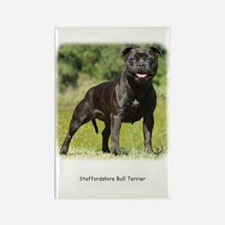Staffordshire Bull Terrier 9R018D-024 Rectangle Ma