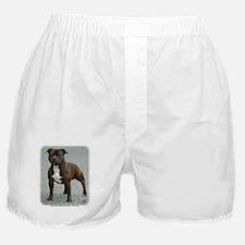 Staffordshire Bull Terrier 9F23-12 Boxer Shorts