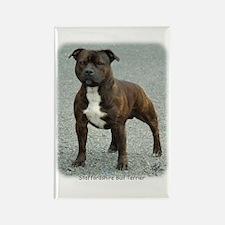 Staffordshire Bull Terrier 9F23-12 Rectangle Magne