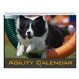 Dog agility border collie Wall Calendars