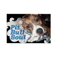 Pit Bull Soul-Pt.4 Rectangle Magnet (10 pack)
